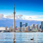 What does the future hold for real estate in Toronto
